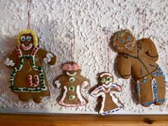 gingerfamily
